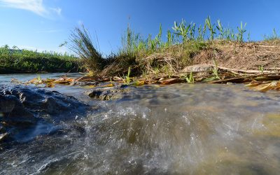 Conoscere la valle del fiume Pecora passo dopo passo